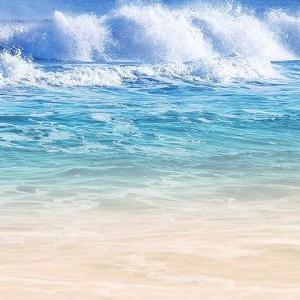夏の海が呼んでいる!?
