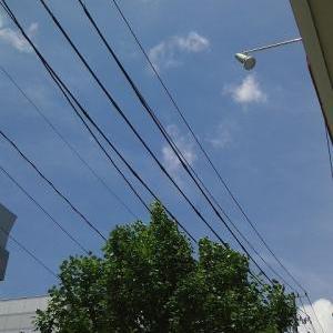 お得・夏・映画w