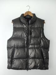 Silver Ski Vest/ダウンベスト/L/ナイロン/SLV/無地